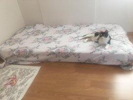 ikinci el yatak